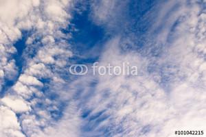 Fotolia_101042215